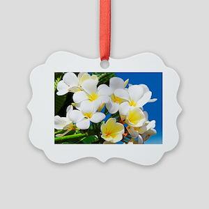 Plumeria Picture Ornament