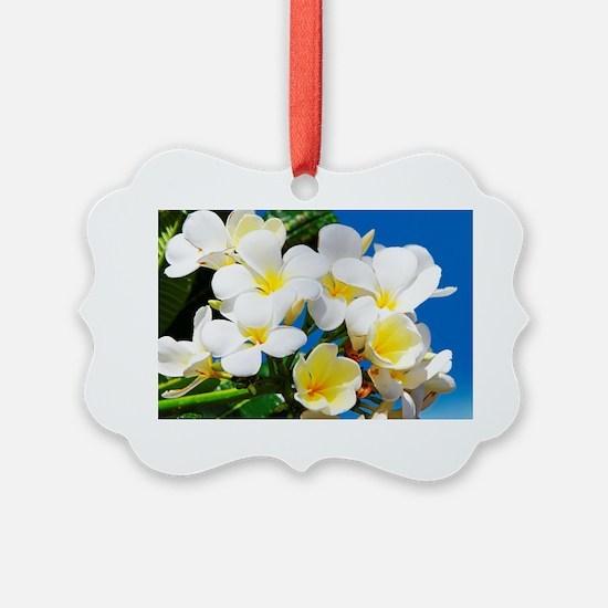 Plumeria Ornament