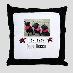 Labdanas Black Lab Throw Pillow
