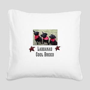 Labdanas Black Lab Square Canvas Pillow