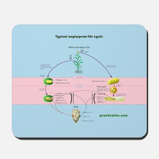 Angiosperm life cycle Mousepad