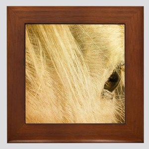 Messy Mane Framed Tile