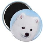 American Eskimo Dog Magnet