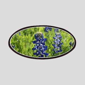 Texas Bluebonnets - landscape Patches