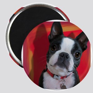 Ruthie the Boston Terrier Magnet
