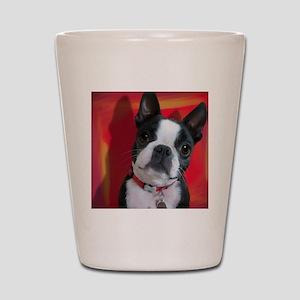 Ruthie the Boston Terrier Shot Glass