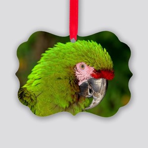 Military macaw Picture Ornament