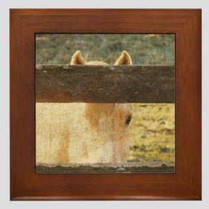 Peeking Palomino Framed Tile