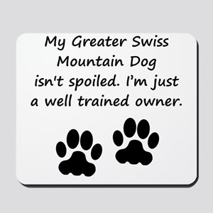 Well Trained Greater Swiss Mountain Dog Owner Mous