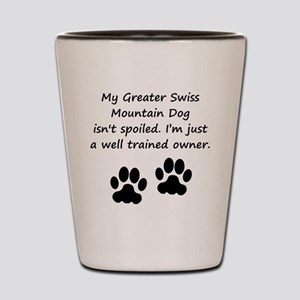 Well Trained Greater Swiss Mountain Dog Owner Shot