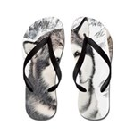 Alaskan Malamute Flip Flops