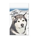 Alaskan Malamute Rectangle Car Magnet