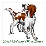 Irish Red and White Setter Square Car Magnet 3&quo