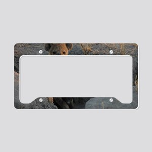 Hyena and Cub License Plate Holder