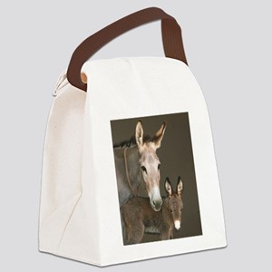 inthebarnfav Canvas Lunch Bag