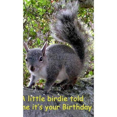 Squirrel Birthday Card Bir Wall Decal By Admincp25388639