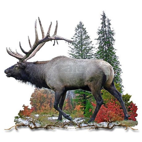 Bull Elk Shower Curtain Favorite