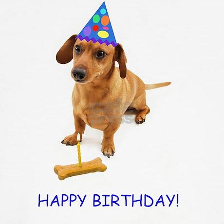Dachshund Birthday Card Boxer Shorts By Admincp112426362