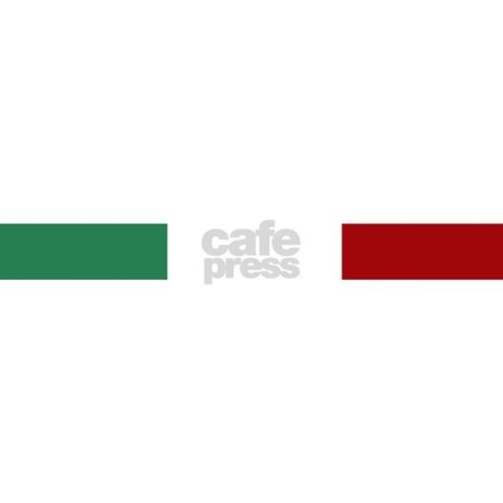 Italian Flag License Plate Frame by World_Flags_and_Banners_1