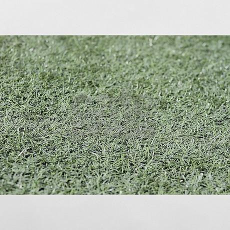 Elegant Grass AstroTurf Pillow Case. Favorite