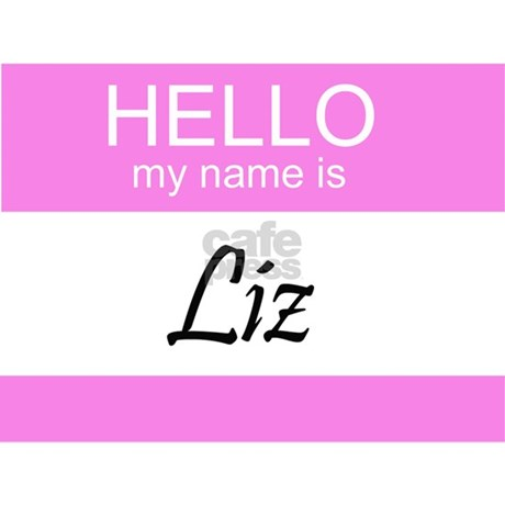 Hello My Name Is Liz License Plate Frame Favorite