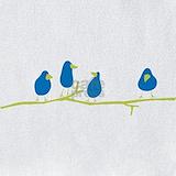 Bluebird Bib