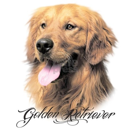 golden retriever pajamas golden retriever pajamas by daecugifts 6853