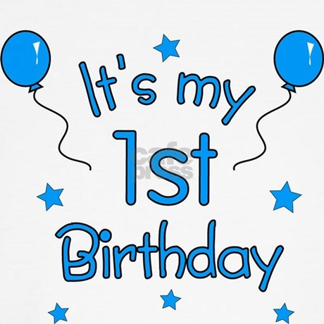 Its My 1st Birthday Dog T Shirt By Totallypainted