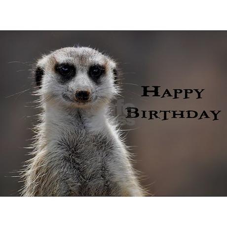 Meerkat Birthday Card By Marieterry