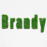 Brandy Underwear