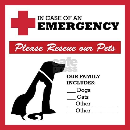 In Case of Emergency: Pet Rescue Sticker