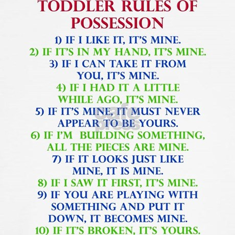 Perfect Toddler Rules Of Possession Funny T Shirt Throw Pi. Toddler Rules Of Possession  Funny ...