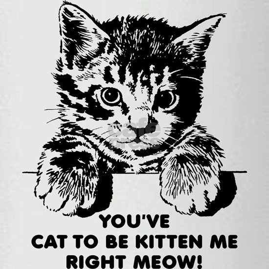 You've Cat To Be Kitten Me Right Meow Funny